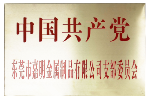 Jiaming Party branch